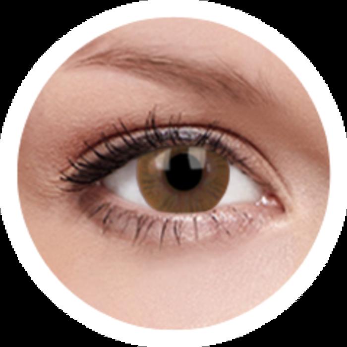 maxvue vision ColourVue Basic - Honey (2 čočky tříměsíční) - nedioptrické