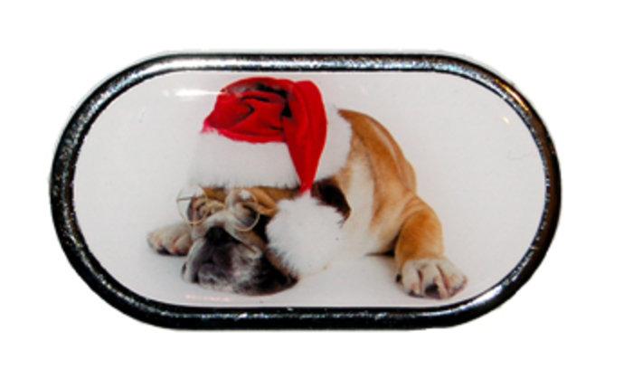 OPTIPAK LIMITED Pouzdro se zrcátkem Vánoční motiv - Pes v brýlích